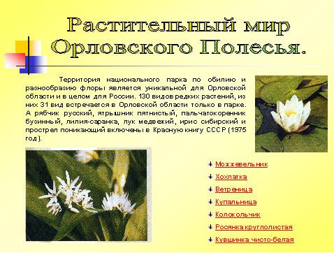Из 98 видов высших растений включенных
