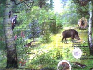 По теме лес – природное сообщество