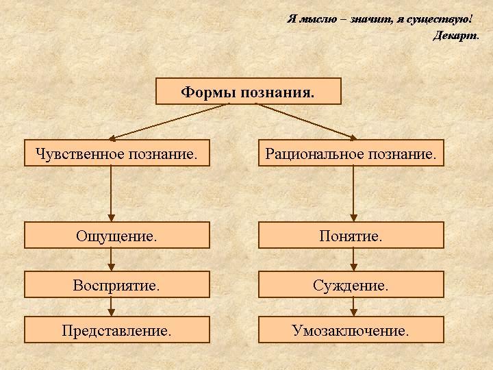 Презентацию по обществознанию на тему психология