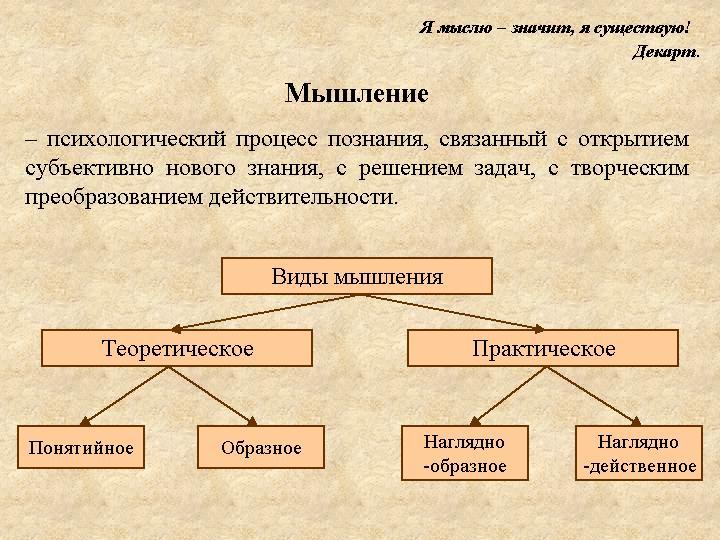 Психология Познавательная