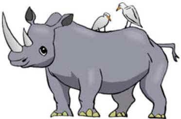 картинка носорога для детей