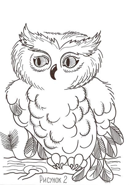 Раскраски сова для детей - 10