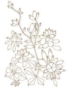 Графический рисунок вышивка