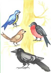 Зимующие птицы голубь картинки
