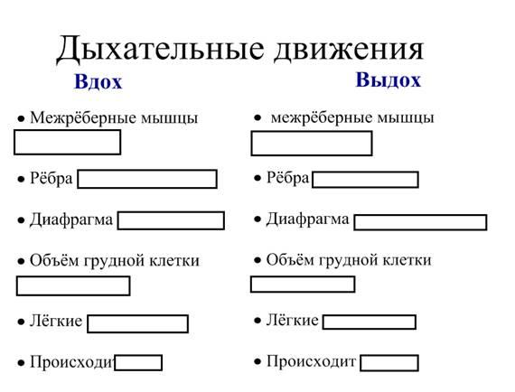 В данной схеме выделены