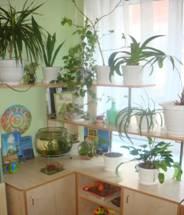 Картинки в центр природы в детском саду