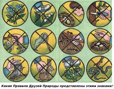 Картинки об охране природы осенью