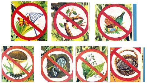 Запрещающие знаки по охране природы для детей повышение квалификации логопеда в тюмени