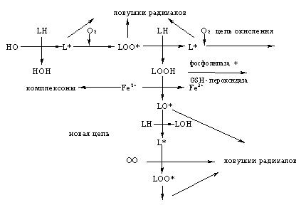 Биологическая роль селена