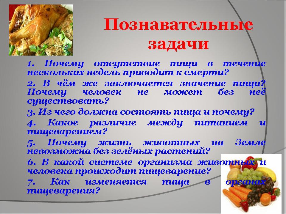 Питание и пищеварение животных реферат 5822