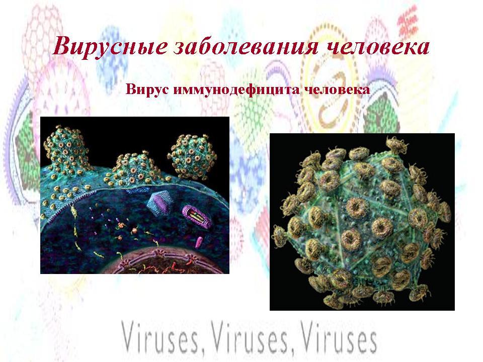 Онкогенные вирусы реферат скачать > решение найдено Онкогенные вирусы реферат скачать