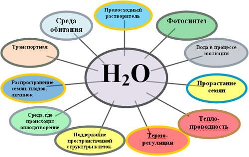 Оксиды в природе и жизни человека
