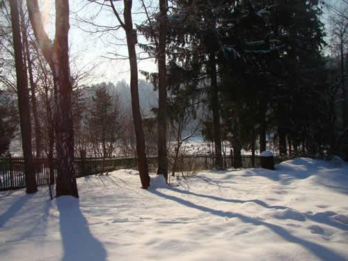 к.ф, юона конец зимы.полдень.сочинение