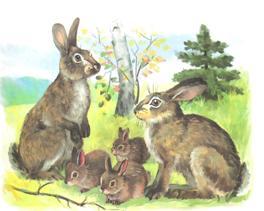 Картинки зайцы весной для детей