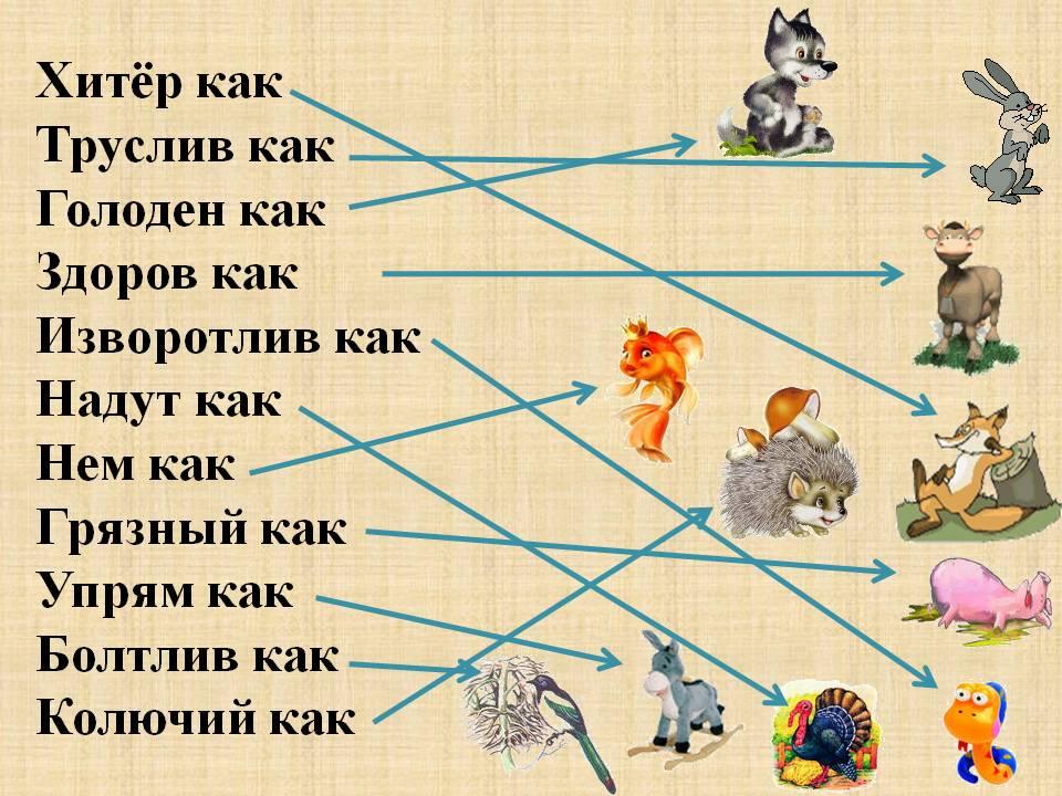 Программа Кружка По Русскому Языку 5 Класс