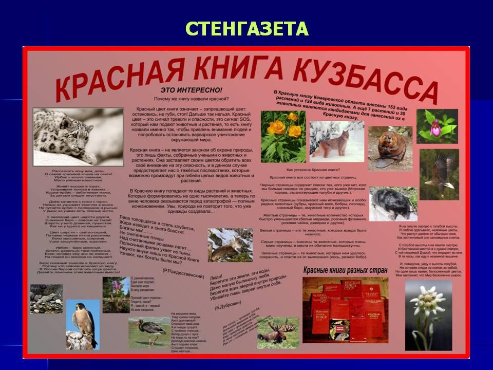 Животные занесенные в красную книгу россии и их картинки 11