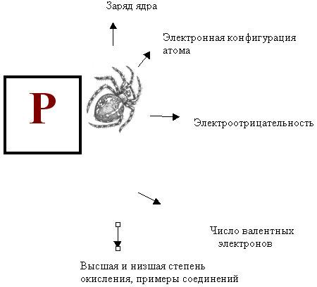 """Составление схемы """"Паучок"""""""