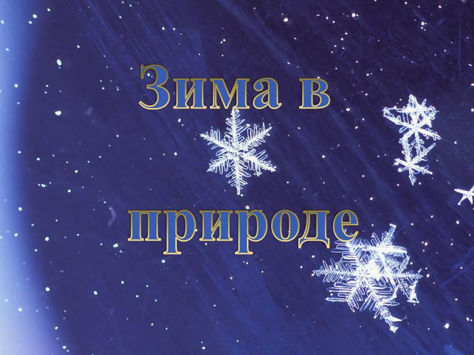 Презентация на тему зима в природе картинки