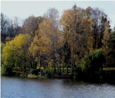 Картинки к рассказу осень на пороге