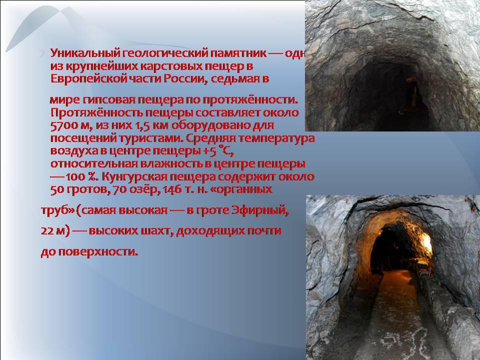 Наука в Рунете каталог научных и научнопопулярных сайтов