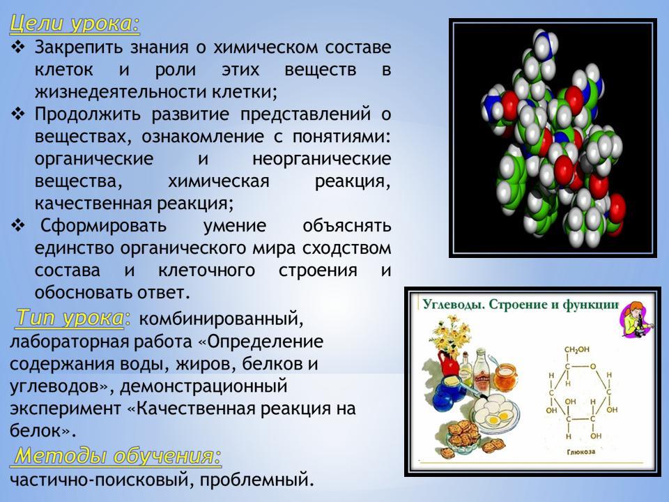 Видеоурок по биологии 9 класс химический состав клетки