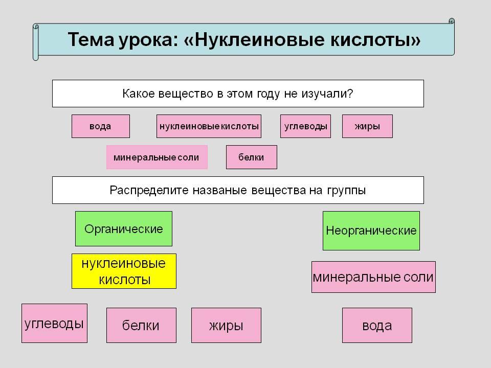 Кислота Нуклеиновая