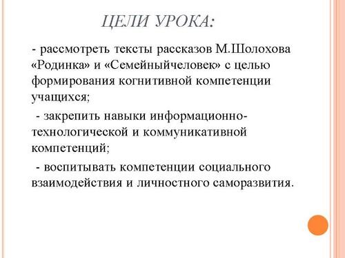 """Урок литературы по теме """""""