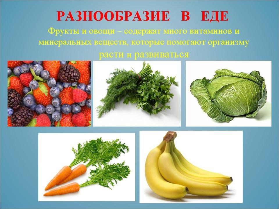 здоровое питание для похудения меню на каждый