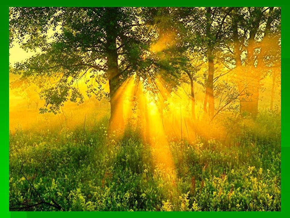 слушать песню золотое сердце стаса михайлова