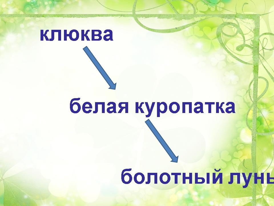 Урок окружающего мира в 3-м