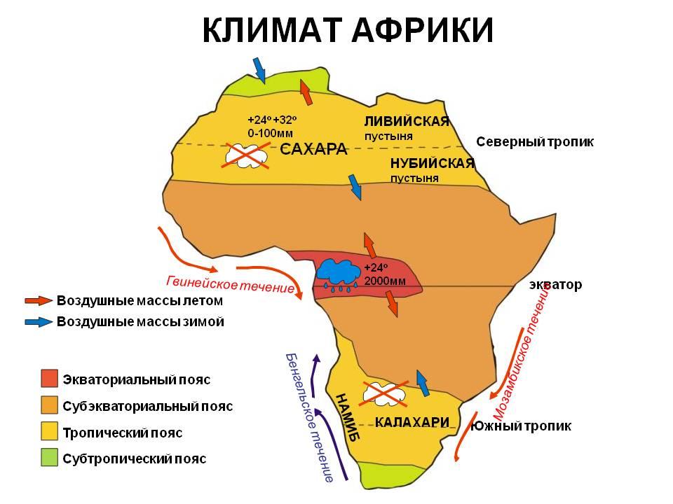 конспект урока географии 7 класс тема климатические пояса африки