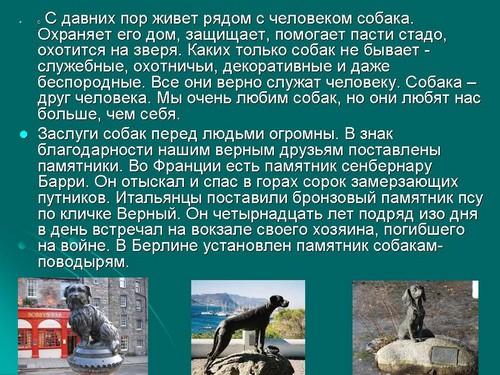 Человек И Животные Презентация