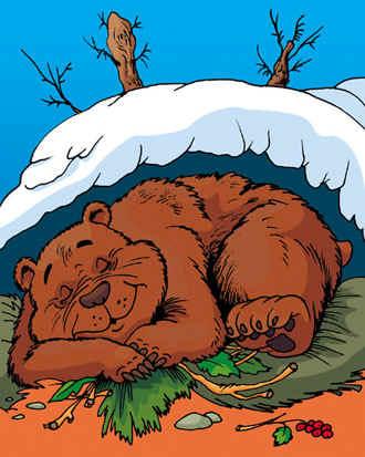 почему медведь зимой спит слушать