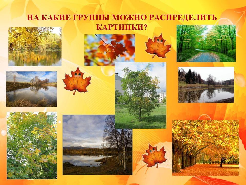 Доклад на тему жизнь осенью растений 100