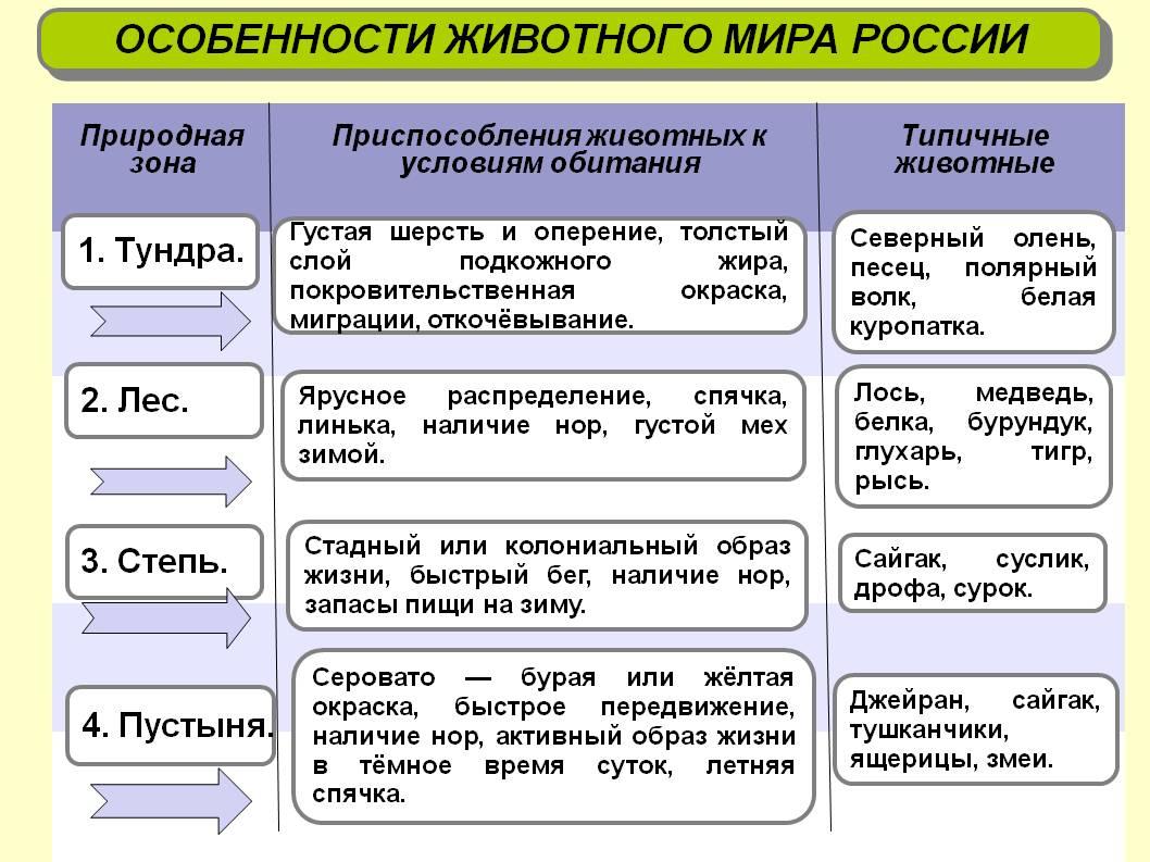 География россии 8 класс баринова 2007 гдз