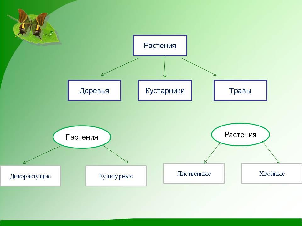Решебник 4 класса по математике и по русскому м и моро 1 часть 388 и 387 решить без регистрации списать решение ответы