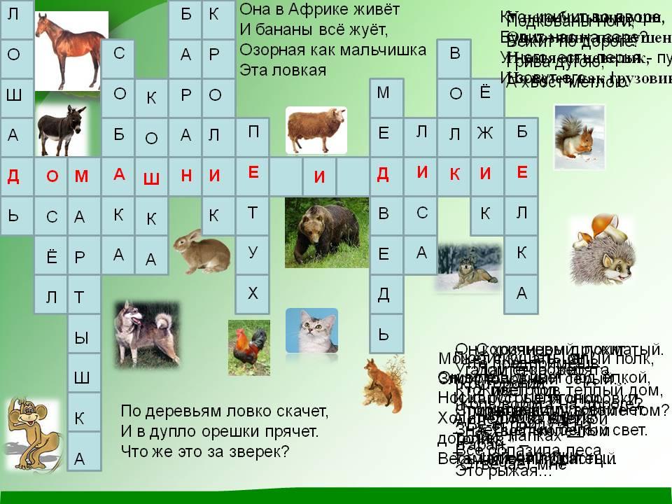 Дикие и домашние животные 2 й класс