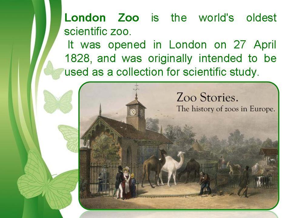 Доклад о лондонском зоопарке на английском с переводом 558
