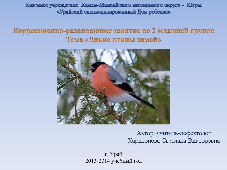Картинки тему птицы зимой