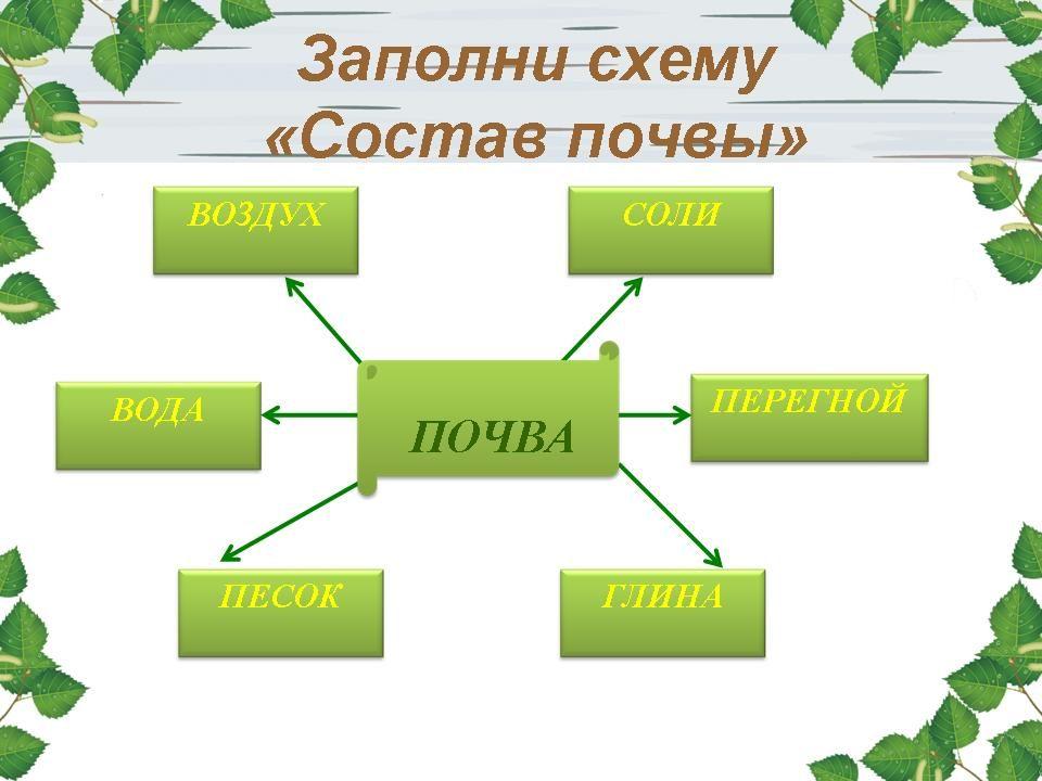 """""""Жизнь леса."""