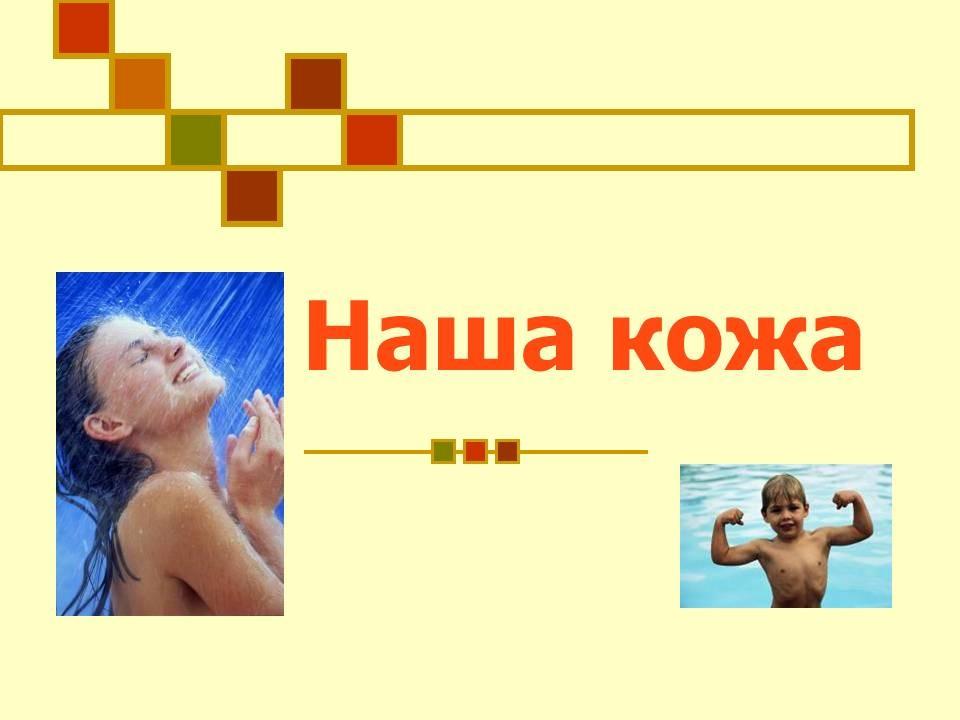 Презентация строение кожи человека