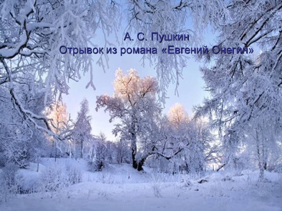 Мультфильм феи тайна зимнего леса кинопоиск