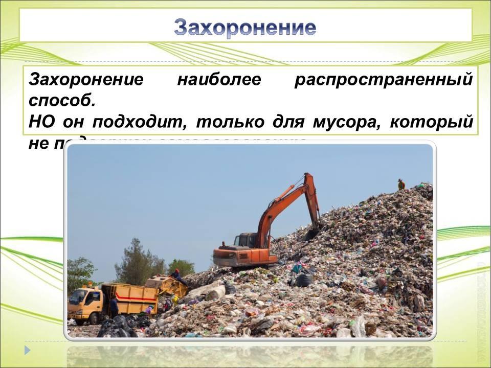 Реферат борьба с мусором 3268